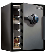 Master Lock LFW205FYC Water Resistant Fire Safe
